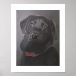 Labrador Retriever Beautiful 11x14 Poster