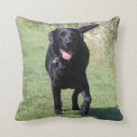Labrador Retriever black dog beautiful cushion Throw Pillows