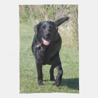 Labrador Retriever black dog beautiful photo, gift Hand Towel