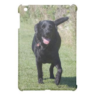 Labrador Retriever black dog beautiful photo, gift iPad Mini Covers