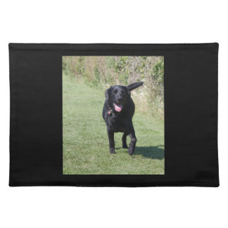 Labrador Retriever black dog beautiful photo, gift Placemat