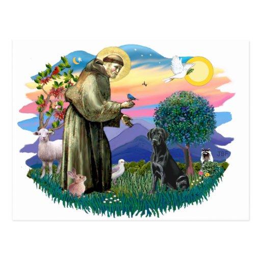 Labrador Retriever (black) Post Cards