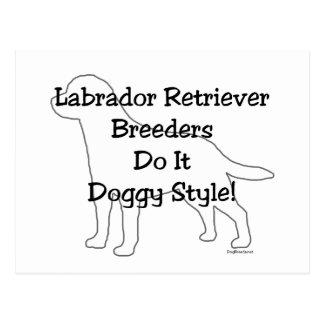 Labrador Retriever Breeders Postcard