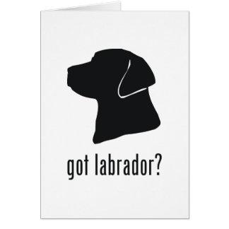 Labrador Retriever Greeting Cards