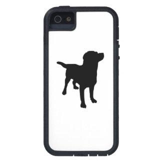 Labrador Retriever Cover For iPhone 5