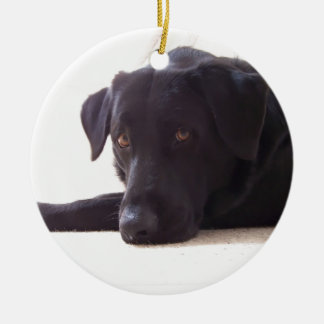 labrador retriever ceramic ornament