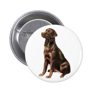 Labrador Retriever - Chocolate 1 Button