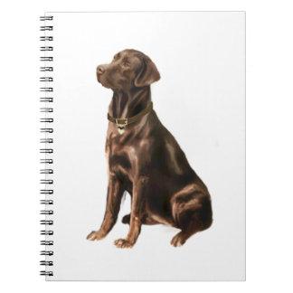 Labrador Retriever - Chocolate 1 Notebook