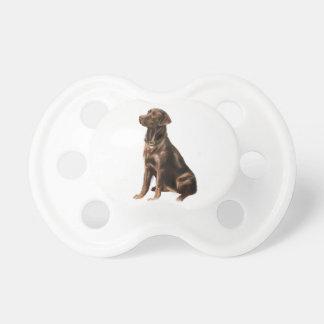 Labrador Retriever - Chocolate 1 Baby Pacifiers