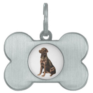 Labrador Retriever - Chocolate 1 Pet Tags