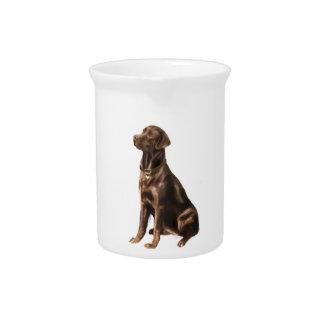 Labrador Retriever - Chocolate 1 Pitcher