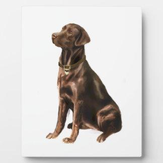 Labrador Retriever - Chocolate 1 Display Plaques