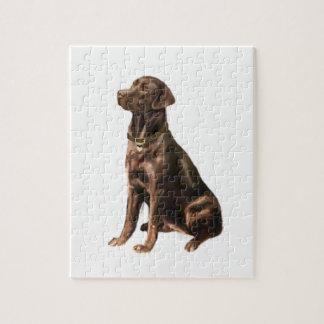 Labrador Retriever - Chocolate 1 Puzzles