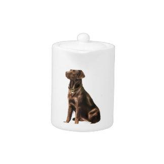 Labrador Retriever - Chocolate 1