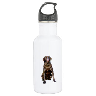 Labrador Retriever - Chocolate 2 Stainless Steel Water Bottle