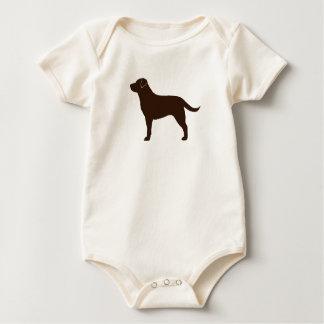 Labrador retriever (chocolate) body de bebé
