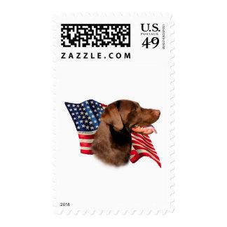 Labrador Retriever (chocolate) Flag Postage Stamps