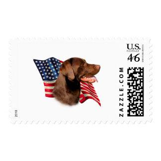 Labrador Retriever chocolate Flag Postage Stamps