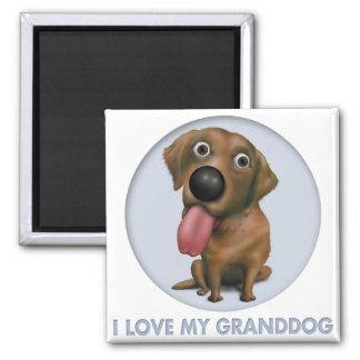 Labrador retriever (chocolate) Granddog Imán Cuadrado