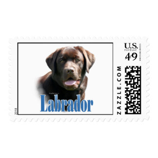 Labrador Retriever (chocolate) Name Postage Stamps