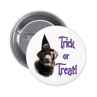 Labrador Retriever chocolate Trick Pinback Buttons