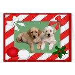 Labrador Retriever Christmas Card Frame