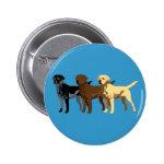 Labrador Retriever colors Buttons