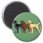 Labrador Retriever colors Fridge Magnet