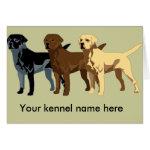 Labrador Retriever colors Greeting Cards