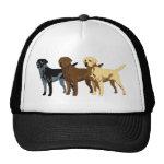 Labrador Retriever colors Hats