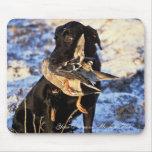 Labrador retriever con el pato silvestre de Drake Alfombrillas De Ratones