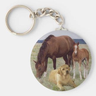 Labrador retriever con llavero de los caballos
