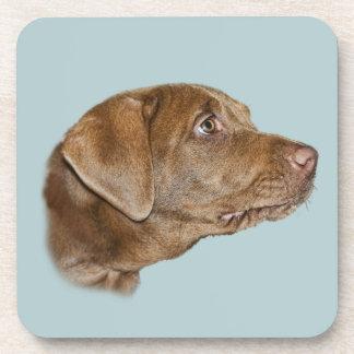 Labrador Retriever Cork Coaster