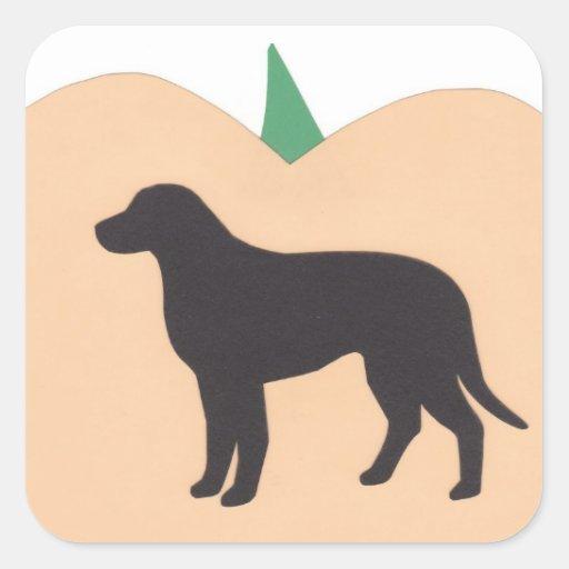 Labrador retriever de la calabaza del feliz calcomanía cuadrada