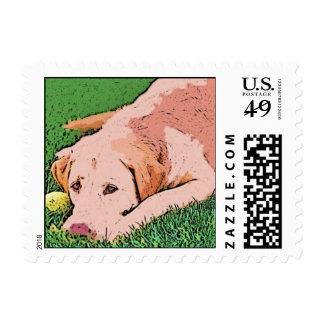 Labrador retriever del amarillo del arte del sellos postales