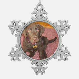Labrador retriever del chocolate adorno de peltre en forma de copo de nieve