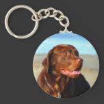 Labrador Retriever Dog Art - Bosco Keychain
