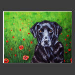 Labrador Retriever Dog Art - Poppy Post Card