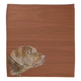 Hunting Dog Bandanas Amp Kerchiefs