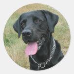 Labrador Retriever dog black stickers, gift idea