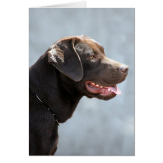 Labrador Retriever Dog Card