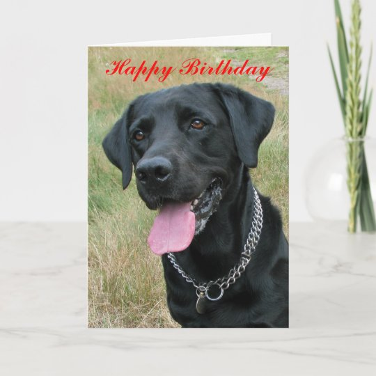 Labrador Retriever Dog Happy Birthday Card Zazzle