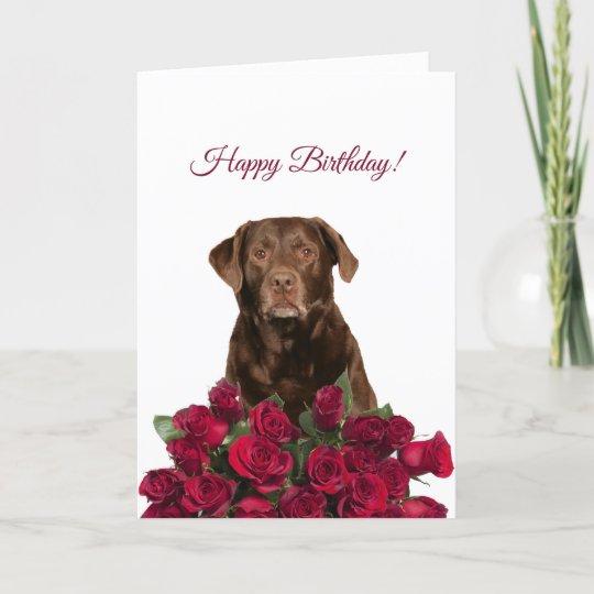 Labrador Retriever Dog Roses Happy Birthday Card Zazzle