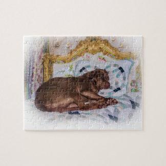 Labrador Retriever Dog, Sleeping, Puzzle