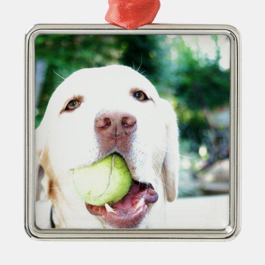 Labrador Retriever Dog Tennis Ball Metal Ornament