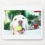 Labrador Retriever Dog Tennis Ball Mouse Pads