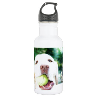 Labrador Retriever Dog Tennis Ball 18oz Water Bottle