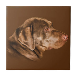 Labrador Retriever Dog, Tile, Customizable Ceramic Tile