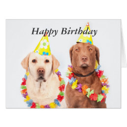 Labrador retriever dogs fun custom birthday card