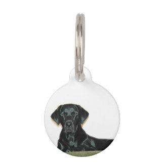Labrador retriever placa para mascotas